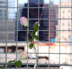 newyork_26ground0.jpg